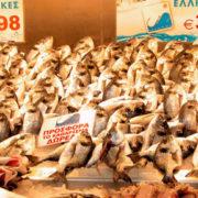 Η εποχικότητα των ψαριών